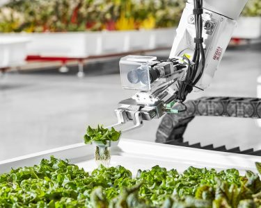granja automatizada